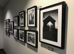 Tom Olmscheid exhibit hanging in Library